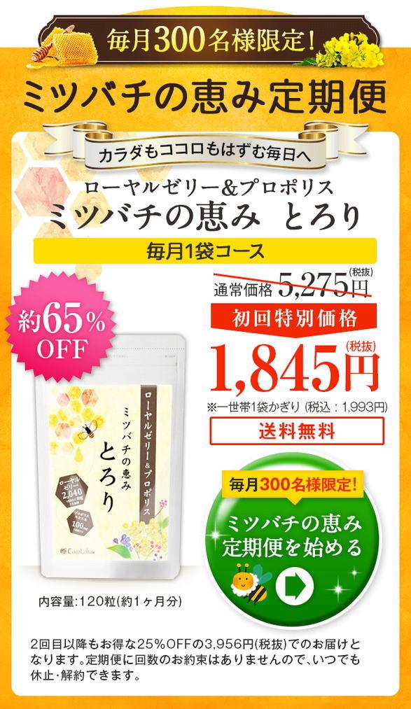 ミツバチの恵み[とろり]公式通販限定【65%】割引キャンペーン!激安最安値はコチラ