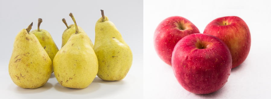 肥満タイプ別ダイエット方法!洋ナシ型orリンゴ型が分かる遺伝子検査キットで肥満のタイプ別ダイエット法が分かる。