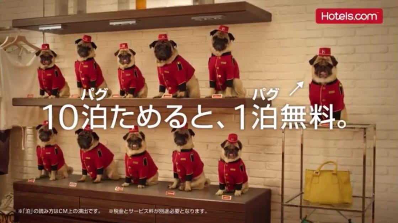CMで見た「パグ犬CMのホテル」って【Hotels.com/ホテルズドットコム】のことですか?